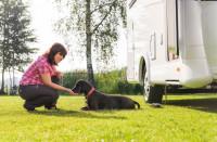 'Pack confort pour nos amis à 4 pattes'' - Anneau d'arrimage extérieur pour camping-cars